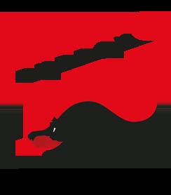 Bucherinvest NRJ Logo